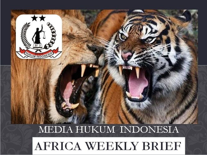 africa weekly brief 3